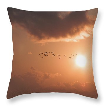 Dawn Flight Throw Pillow
