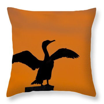 Dawn Of A Double-crested Cormorant  Throw Pillow