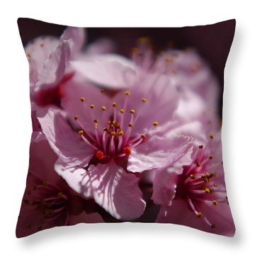 Day Dreaming In Pink Throw Pillow
