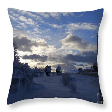 Throw Pillow featuring the photograph Daybreak by Fred Wilson