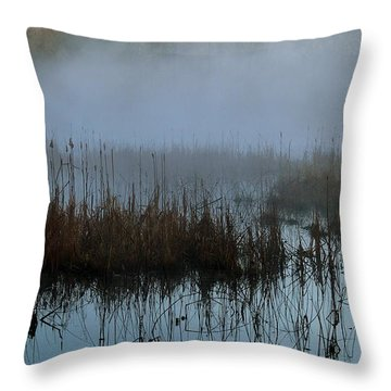 Daybreak Marsh Throw Pillow