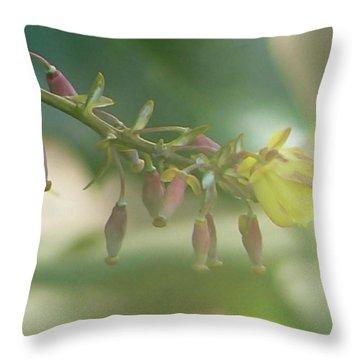 Daydreamer Throw Pillow by Pamela Patch