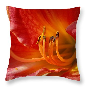 Daylilly Close Up Throw Pillow by Randy J Heath
