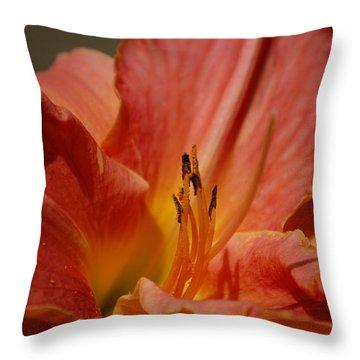 Daylilly Throw Pillow by Randy J Heath