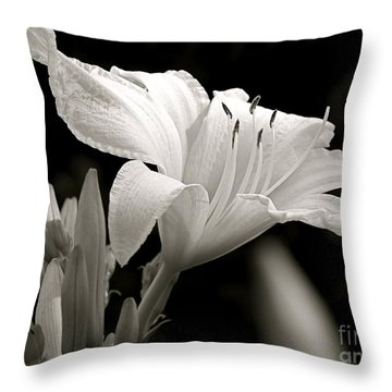 Daylily Study In Bw Iv Throw Pillow by Sue Stefanowicz