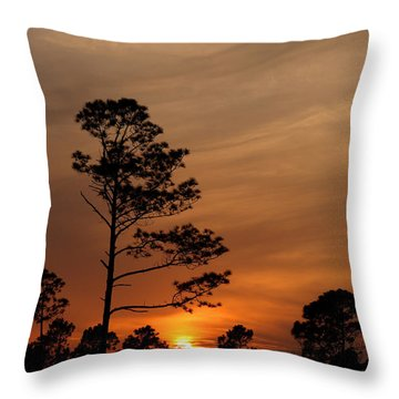 Throw Pillow featuring the photograph Days Dusk by Cindy Haggerty