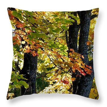 Dazzling Days Of Autumn Throw Pillow by Will Borden