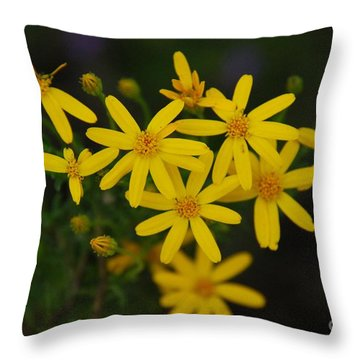 Throw Pillow featuring the photograph Dbg 041012-0281 by Tam Ryan