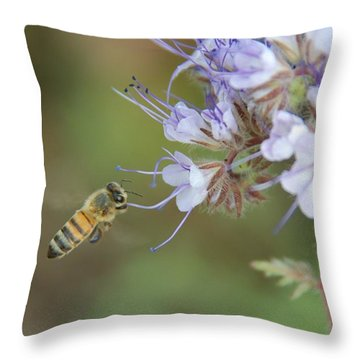 Throw Pillow featuring the photograph Dbg 041012-0310 by Tam Ryan