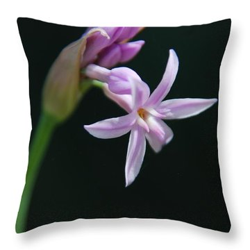 Throw Pillow featuring the photograph Flowering Bud by Tam Ryan