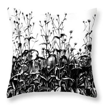 De Vries Experimental Garden Throw Pillow by Science Source