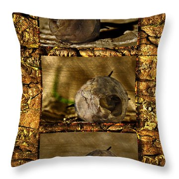 Throw Pillow featuring the photograph Dead Rosebud Triptych by Steve Purnell
