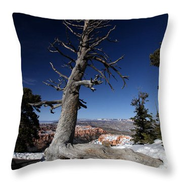 Throw Pillow featuring the photograph Dead Tree Over Bryce Canyon by Karen Lee Ensley