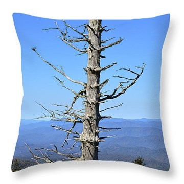 Dead Tree Throw Pillow by Susan Leggett