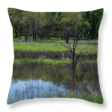 Deadwood Reflections Throw Pillow by Robyn Stacey