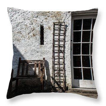 Decay Throw Pillow by Semmick Photo
