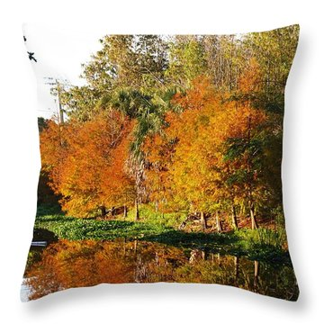 December Morn On Deerfield Creek Throw Pillow