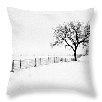 December Throw Pillow by Sue Stefanowicz