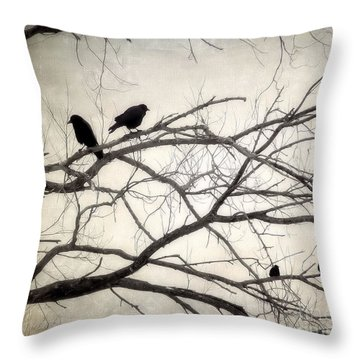 Decree At Sunset Throw Pillow by Angie Rea