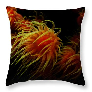 Deep Ocean Coral Polyp Throw Pillow
