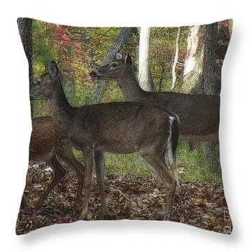 Throw Pillow featuring the photograph Deer In Forest by Lydia Holly