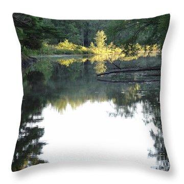 Deer River In Early Sun Throw Pillow