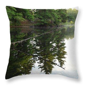 Deer River Reflection Throw Pillow
