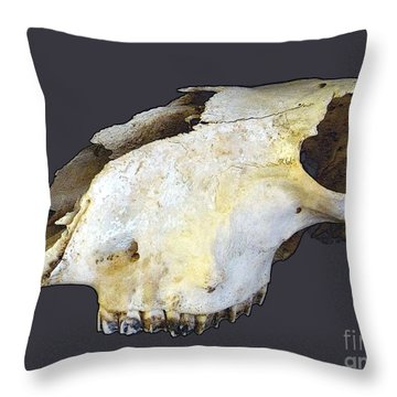 Deer Skull Throw Pillow by Renee Trenholm