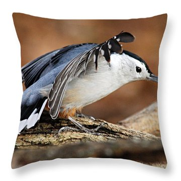 Defiant Nuthatch Throw Pillow by Larry Ricker