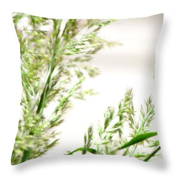 Defying Time Throw Pillow by France Laliberte