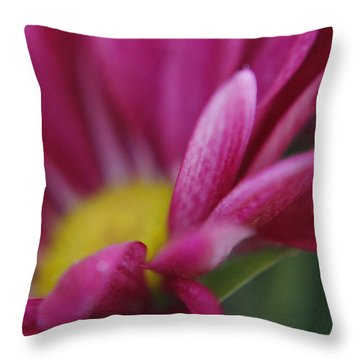 Delicacy Throw Pillow