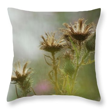 Throw Pillow featuring the photograph Delicate Balance by Tam Ryan