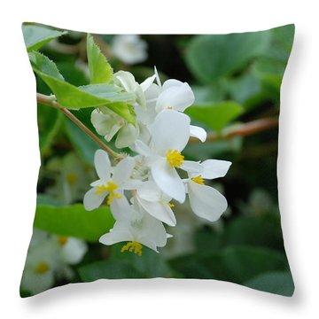 Delicate White Flower Throw Pillow by Jennifer Ancker