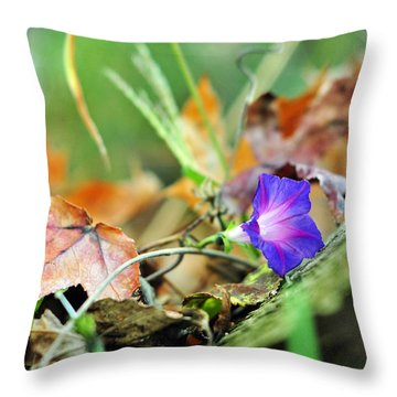 Delight In Disorder Throw Pillow by Rebecca Sherman