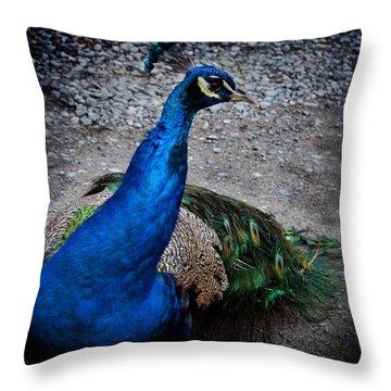 Demiurge Throw Pillow