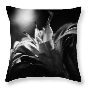 Descent Of The Spirit Throw Pillow
