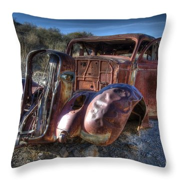 Desert Beauty Throw Pillow by Bob Christopher