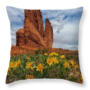 Desert Flowers Throw Pillow by Charlie Choc