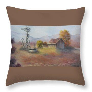 Terry Bird Decorative Pillow : Desert Heat Painting by Terry Boulerice