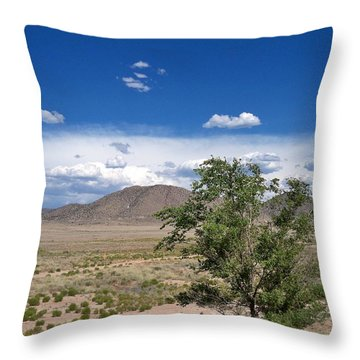 Desert In New Mexico Throw Pillow by Rick Frost