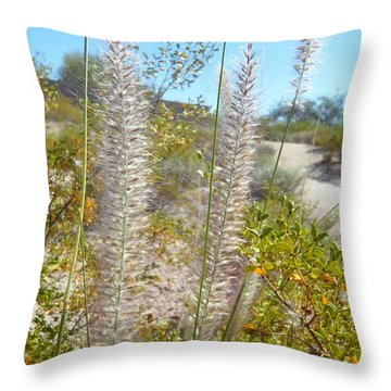 Throw Pillow featuring the photograph Desert Trail by Kume Bryant