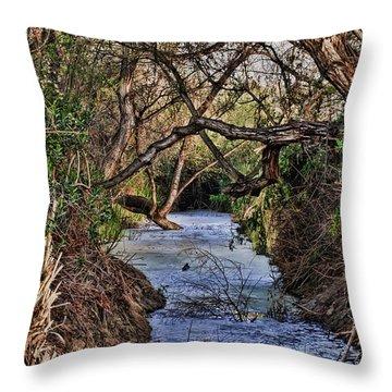 Desolation Creek Hdr Throw Pillow by Paul Marto