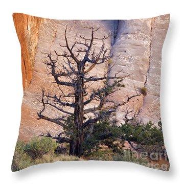 Devil's Garden - D003107 Throw Pillow