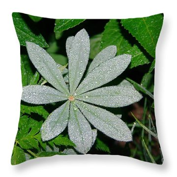 Dew Drops In The Morn  Throw Pillow by Jeff Swan