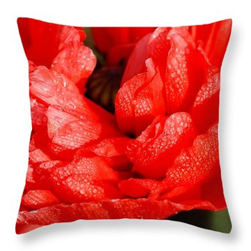 Throw Pillow featuring the photograph Dewdrops by Fotosas Photography