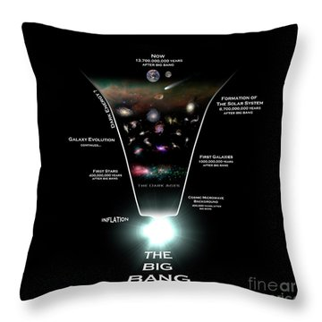 Diagram Illustrating The History Throw Pillow by Rhys Taylor