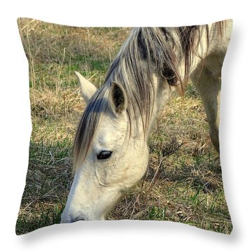 Dinner Time Throw Pillow by Marty Koch