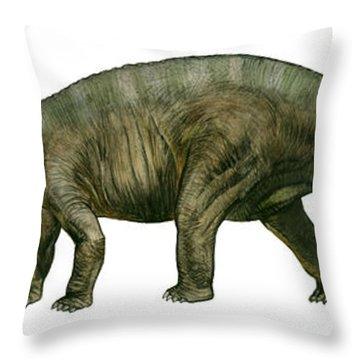 Diplodocus, A Prehistoric Era Dinosaur Throw Pillow by Sergey Krasovskiy