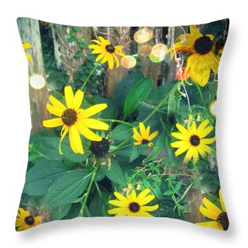 Throw Pillow featuring the photograph Dirty Susan by Laura Brightwood
