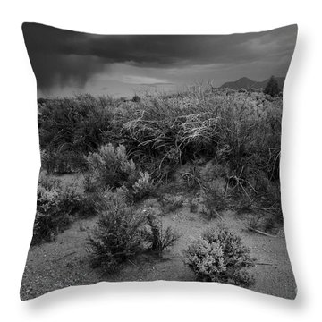 Distant Shower Throw Pillow